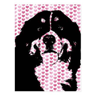 Valentines - Bernese GebirgshundeSilhouette Postkarte