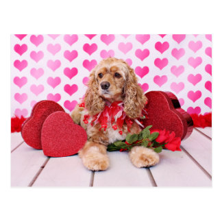 Valentinsgrüße - Cocker spaniel - Bella Postkarten