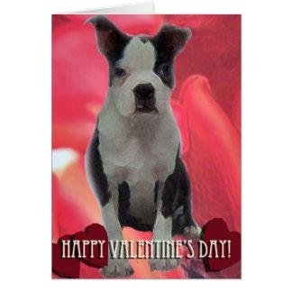 Valentinstag-Karte Bostons Terrier Karte