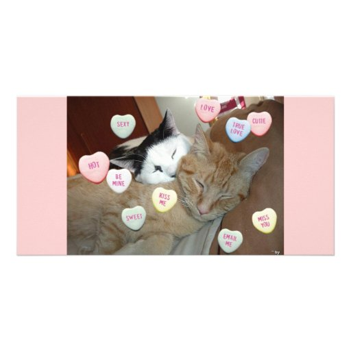 Valentinstag-Kätzchen Foto Grußkarte