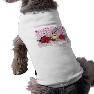 Valentinstag - Tobey - Cocker spaniel Top