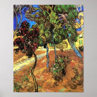 Van Gogh - Bäume im Garten von St- Paulkrankenhaus Poster