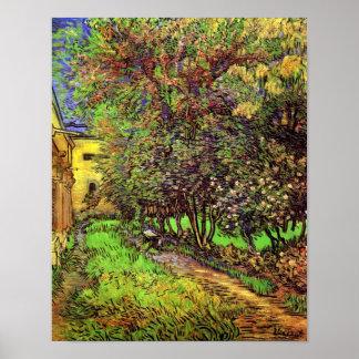 Van Gogh - der Garten von St- Paulkrankenhaus Poster