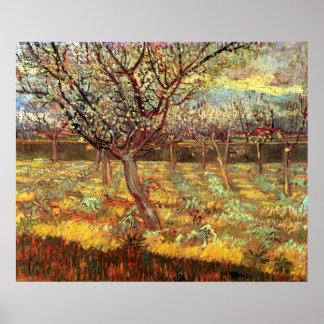 Van- Goghaprikosen-Baum in der Blüte, Vintage Poster