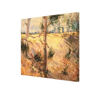 Van- Goghbäume auf einem Gebiet an einem sonnigen Leinwanddruck