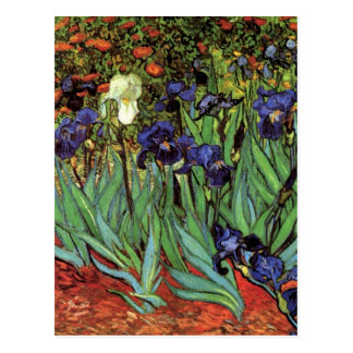 Van- Goghiris, Vintage Post-Impressionismus-Kunst Postkarten