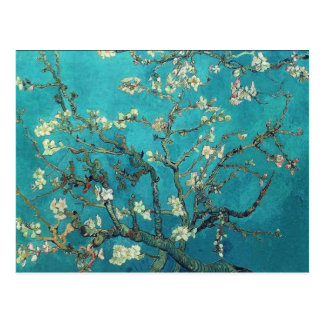 Van- Goghmandel-Blüten-Postkarte Postkarte