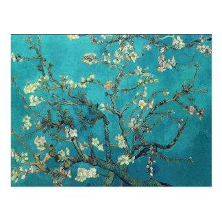 Van- Goghmandel-Blüten-Postkarte Postkarten