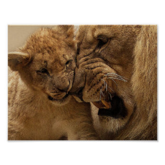 Vater-und Sohn-Löwe-Plakat Poster