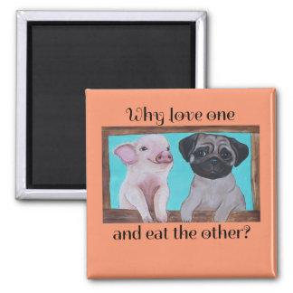 Veganer Magnet warum Liebe eine und essen die Quadratischer Magnet