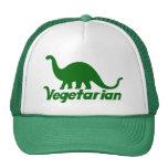 Vegetarischer Dinosaurier Kult Mützen