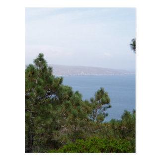 Vegetation Postkarte