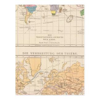 Vegetationsgebiete, Thiere Atlas-Karte Postkarte