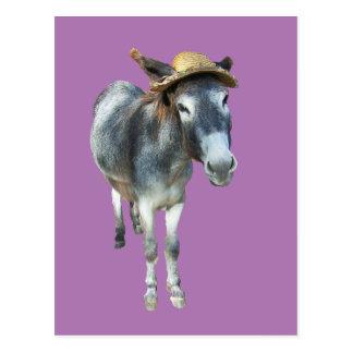 Veilchen der Esel im Strohhut mit Blumen Postkarte