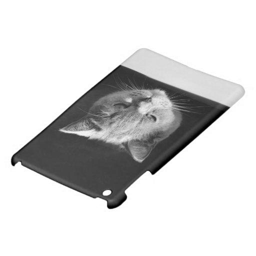 Verärgerte Katze iPad Mini Hülle