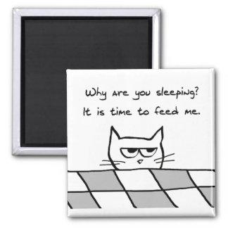 Verärgerte Katze will Sie aus Bett heraus Kühlschrankmagnete