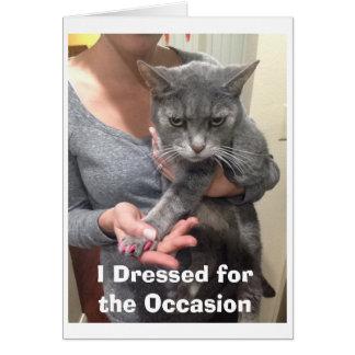 Verärgerte Katzen-Geburtstags-Karte Grußkarte