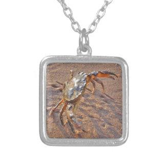Verärgerte Krabbe Versilberte Kette