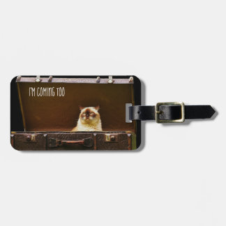Verärgerter Katzen-personalisierter Gepäck UMBAU Kofferanhänger