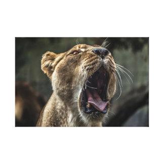 Verärgerter Löwe Leinwanddruck