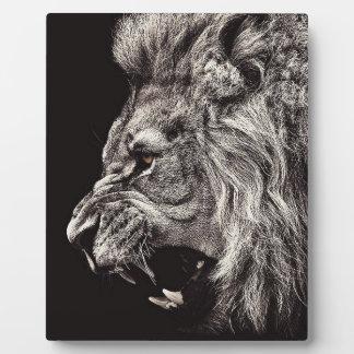 Verärgerter männlicher Löwe Fotoplatte