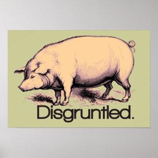 Verärgertes Schwein Poster