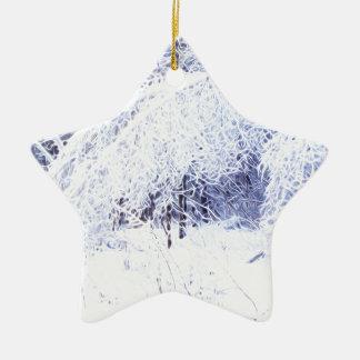 Verbiegende Niederlassungen nach dem Eissturm Keramik Stern-Ornament