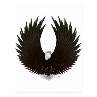 Verbreiten Sie Eagle.jpg Postkarte