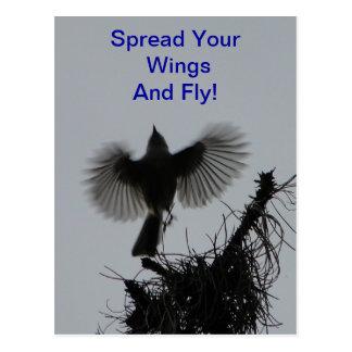 Verbreiten Sie Ihre Flügel und Fliege, büscheligen Postkarte