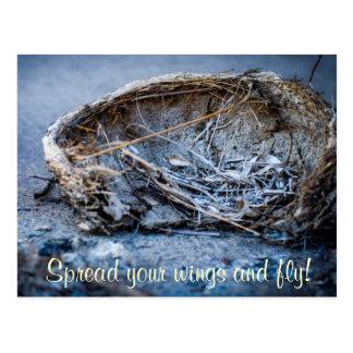 Verbreiten Sie Ihre Flügel und fliegen Sie! Postkarte