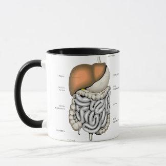Verdauungsfördernde Organe Tasse