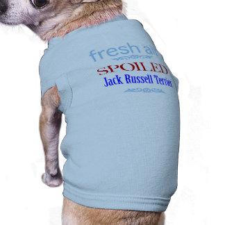 verdorbener Jack-Russell-Terrier Top