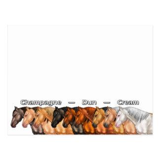 Verdünnte Pferde Postkarte