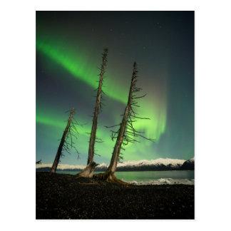 Vergessene gezierte Aurora Postkarte