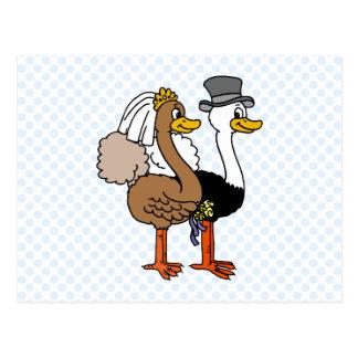 Verheiratetes Ostrichs Postkarte