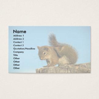 Verkratzen des roten Eichhörnchens Visitenkarte