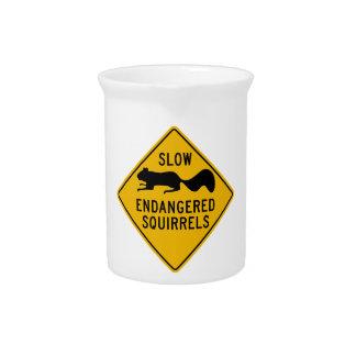 Verlangsamen Sie gefährdete Eichhörnchen, Getränke Pitcher