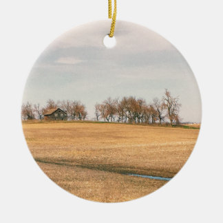 Verlassenes Grasland-Gehöft in North Dakota #3B Keramik Ornament