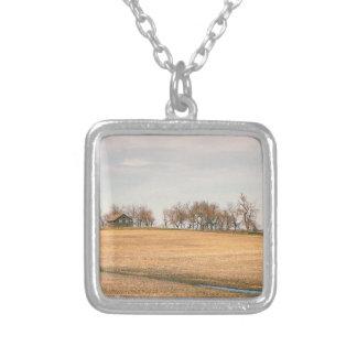 Verlassenes Grasland-Gehöft in North Dakota #3B Versilberte Kette