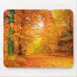 Vermont-Herbst-Natur-Landschaft Mousepads