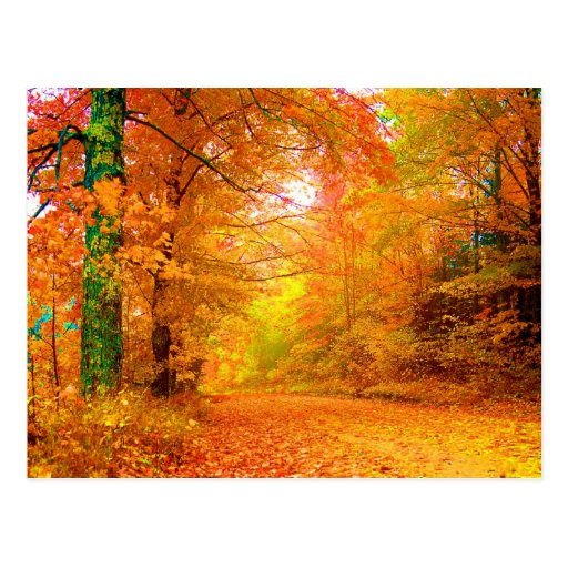 Vermont-Herbst-Natur-Landschaft Postkarte
