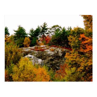 Vermont-Herbst Postkarte