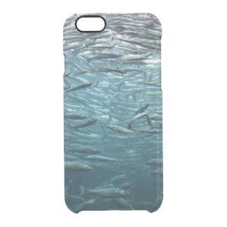 Verpackt wie Sardinen Durchsichtige iPhone 6/6S Hülle