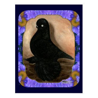 Verpfuschte Trommel-Taube gerahmt Postkarte