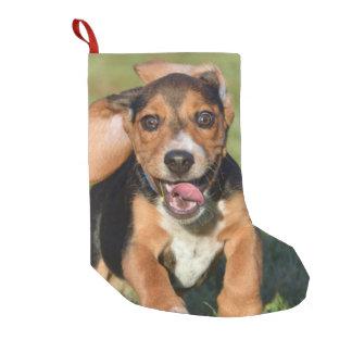 Verrückter Beagle-Welpen-Betrieb Kleiner Weihnachtsstrumpf