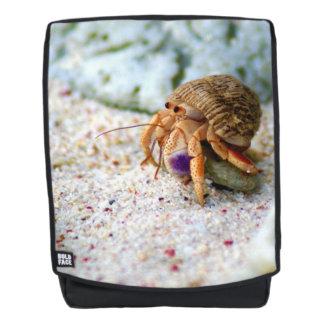 Versanden Sie Krabbe, Curaçao, karibische Inseln, Rucksack
