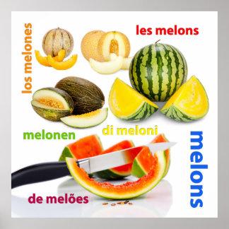 Verschiedene Arten der Melonen Poster