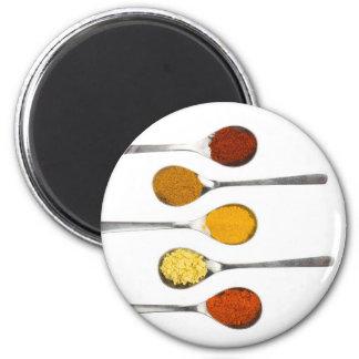Verschiedene Gewürzgewürze auf Metalllöffeln Runder Magnet 5,7 Cm
