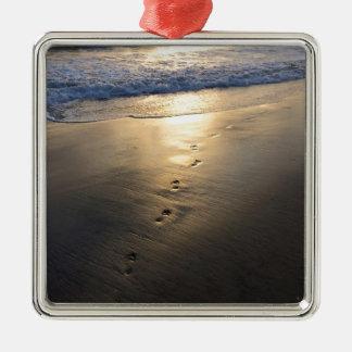 Verschwindene Abdrücke Silbernes Ornament
