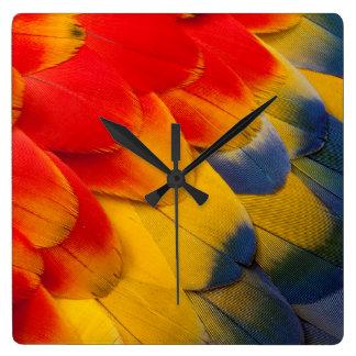 Versieht Scharlachrot Macaw-Nahaufnahme mit Federn Quadratische Wanduhr